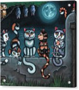 Whos Your Daddy Cat Painting Acrylic Print