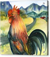 Why Did The Rooster Cross The Road Acrylic Print