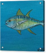 Wicked Tuna  Acrylic Print