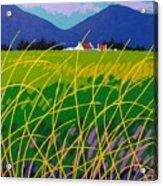 Wicklow Meadow Ireland Acrylic Print