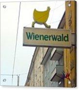 Wienerwald In Salzburg Acrylic Print
