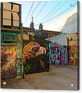 Wild Alley Acrylic Print