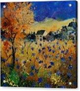 Wild Chicorees 56 Acrylic Print