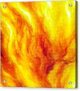Wild Fire 03 Acrylic Print