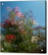 Wild Flowers 1 Acrylic Print