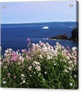 Wild Flowers And Iceberg Acrylic Print