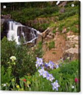 Wild Flowers And Waterfalls Acrylic Print