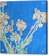 Wild Flowers on Blue Acrylic Print