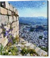Wild Flowers On Loophole In Palamidi Castle Acrylic Print
