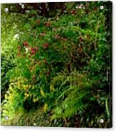 Wild Flowers On The Cliff Path Acrylic Print
