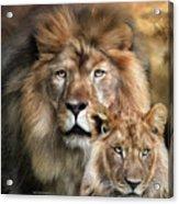 Wild Generations Acrylic Print