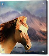 Wild Horse - Painting Acrylic Print