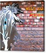 Wild Horses For Sale Acrylic Print