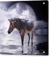 Wild In The Moonlight Acrylic Print