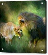 Wild Instinct Acrylic Print