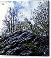 Wild Manhattan 4 Acrylic Print