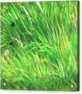 Wild Meadow Grass Structure In Bright Green Tones, Painting Detail. Acrylic Print