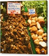 Wild Morell Mushrooms Acrylic Print by Lydia L Kramer