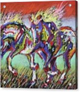 Wild Pastel Ponies Acrylic Print by Louise Green