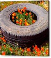 Wild Poppies Recycled Acrylic Print