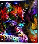 Wild Puma Colors Acrylic Print