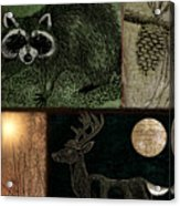Wild Racoon And Deer Patchwork Acrylic Print