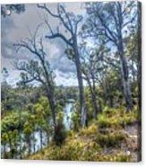 River Bush Track Acrylic Print