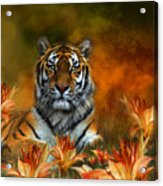 Wild Tigers Acrylic Print