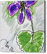 Wild Violet  Acrylic Print