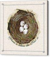 Wildcraft Nest On Linen Acrylic Print