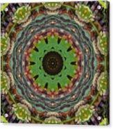 Wilder Flower Mandala Acrylic Print