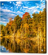 Wilderness Pond - Paint Acrylic Print