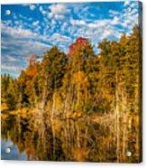 Wilderness Pond  Acrylic Print