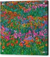 Wildflower Magic Acrylic Print