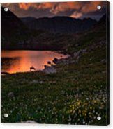 Wildflower Sunset At Summit Lake Acrylic Print