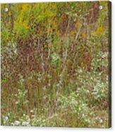 Wildflower Tapestry In Jefferson County Acrylic Print