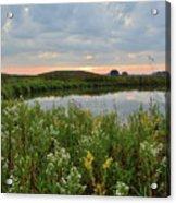 Wildflowers Along Nippersink Creek In Hackmatack Nwr Acrylic Print