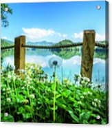 Wildflowers At The Lake In Spring Acrylic Print