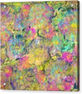Wildflowers Acrylic Print by Don  Wright
