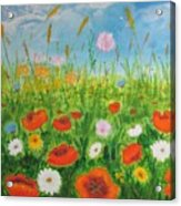 Wildflowers Field Acrylic Print