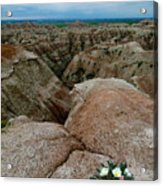 Wildflowers In The Badlands Acrylic Print