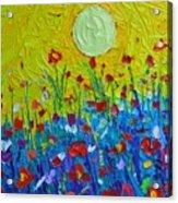 Wildflowers Meadow Sunrise Acrylic Print