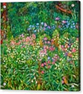 Wildflowers Near Fancy Gap Acrylic Print