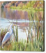 Wildlife Refuge Acrylic Print