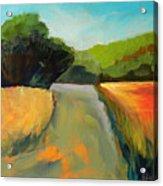 Wildwood Road Acrylic Print