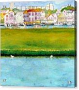 Wildwood Wetlands Acrylic Print