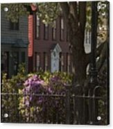 William Street In Bloom Acrylic Print