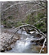 Williams River In Winter Acrylic Print