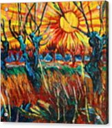 Willows At Sunset - Study Of Vincent Van Gogh Acrylic Print