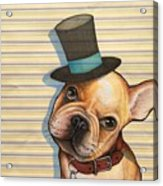 Willy In A Top Hat Acrylic Print